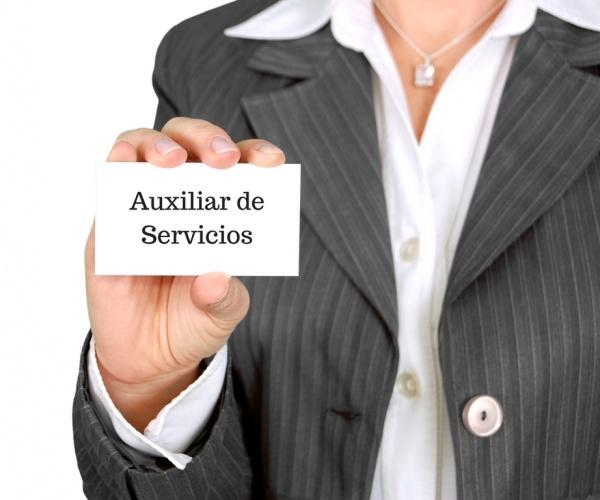 Auxiliar de Servicios, servicios auxiliares, servicios a comunidades