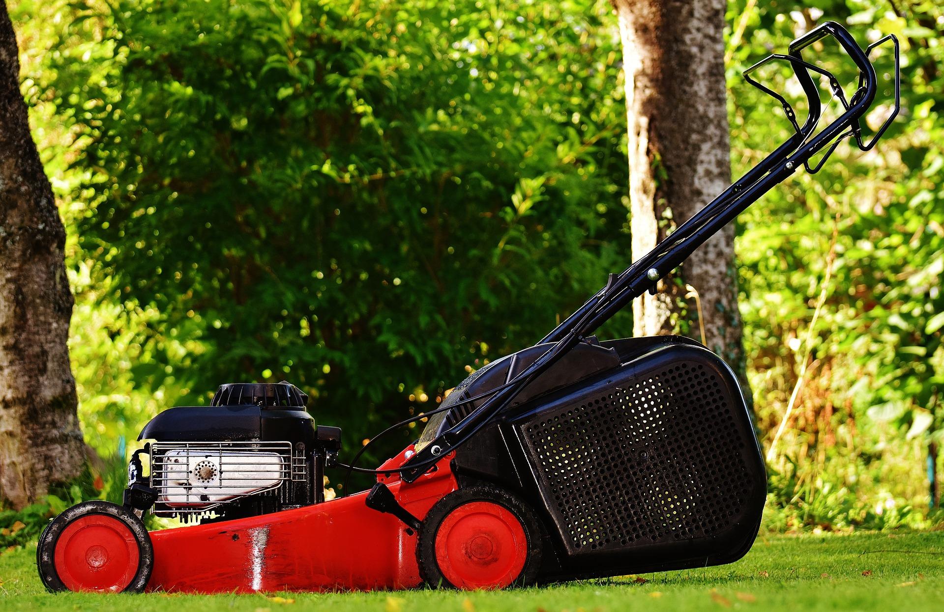 Jardinería, césped, riego, mantenimiento de jardines